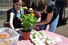 Sandy Chamber of Commerce - Music Fair & Feast - Kids Bake Off
